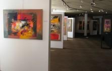 Expo melun 2009 (5)